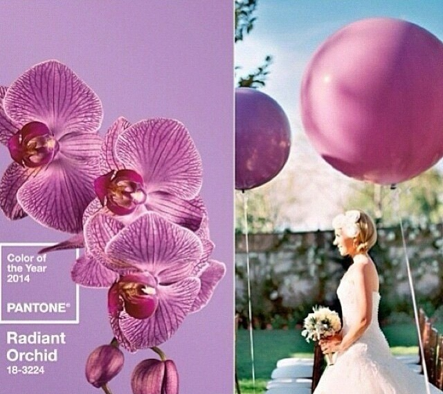 radiant orchid pantone colour 2014