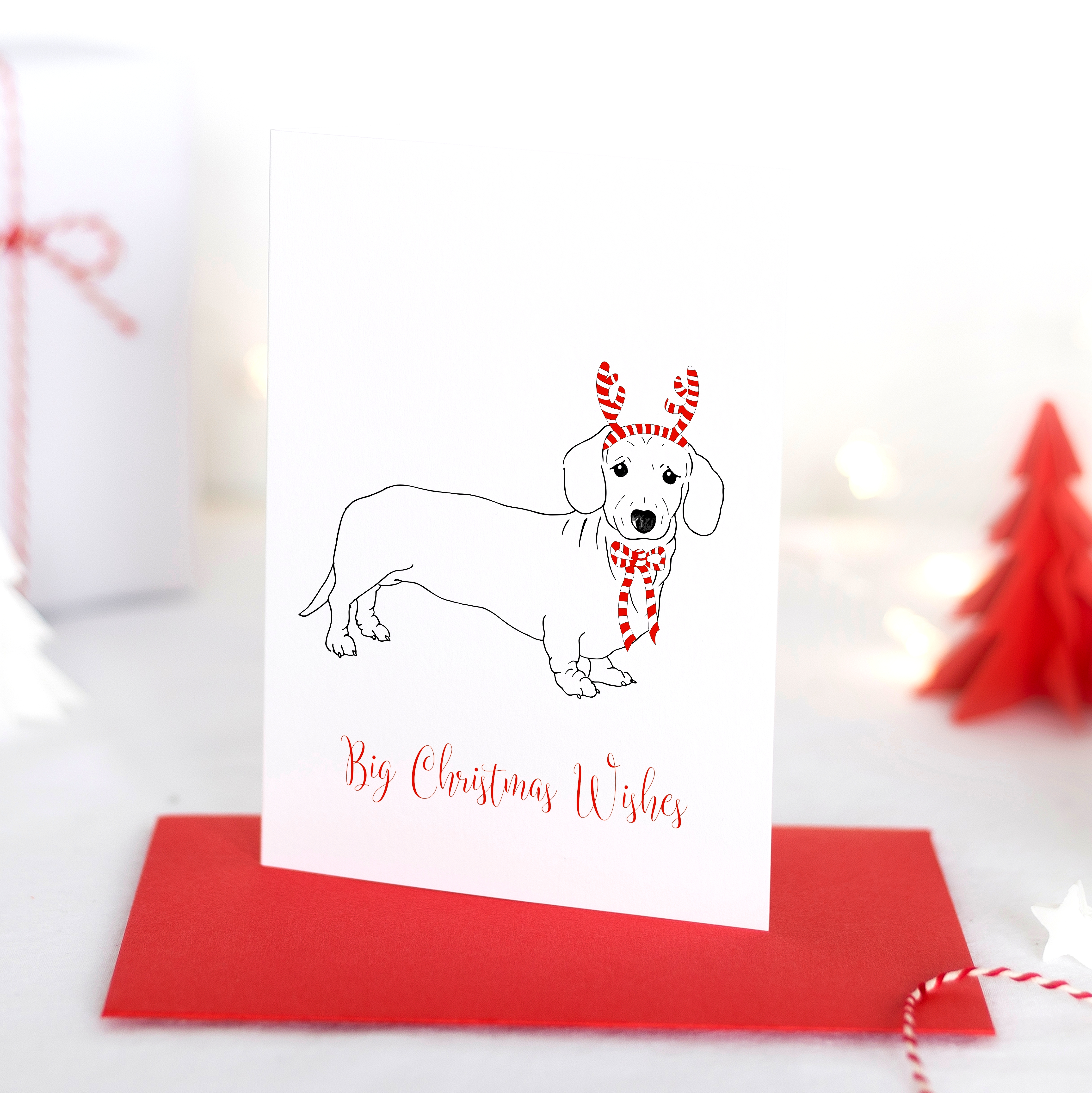 partypooch_christmas-cards_photo_mr-chipsblog