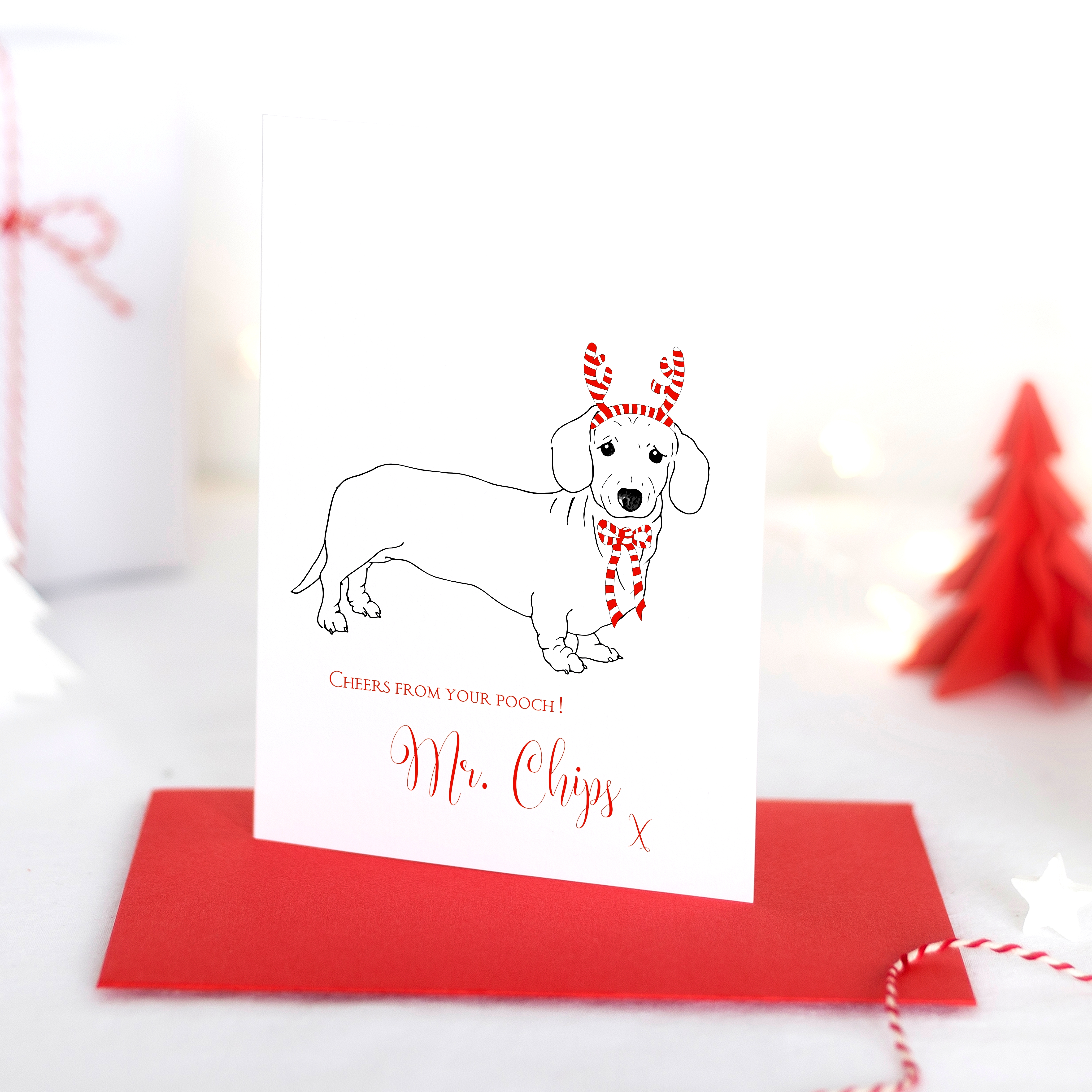 partypooch_christmas-cards_photo_mr-chips_personalisedblog