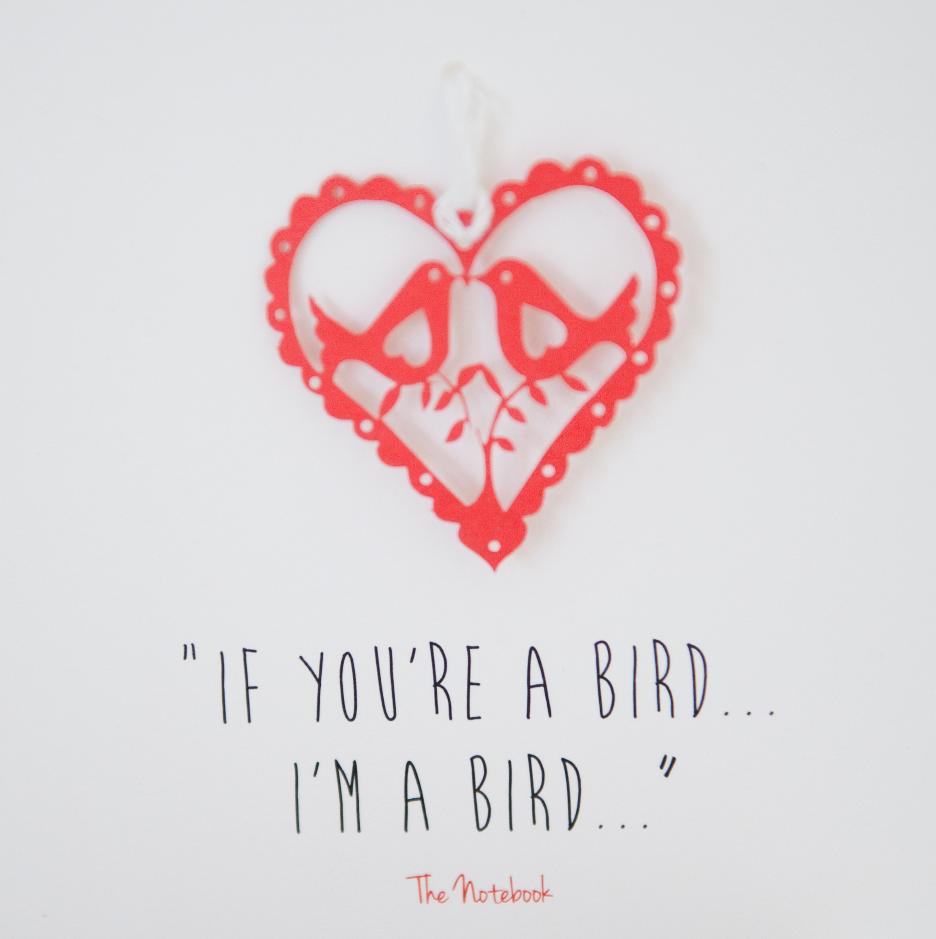 Valentines red love birds paper cut The Notebook quote card 4